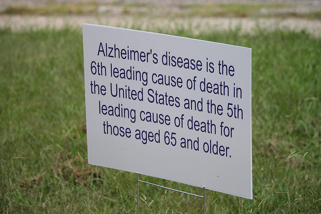 the cause of alzheimers disease essay